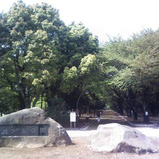 Hikarigaoka