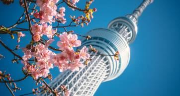 tokyo airbnb