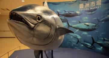 Exploring Toyosu—Tokyo's Revitalized Fish Market